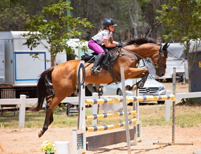 Competitive Child's/ Junior Showjumper
