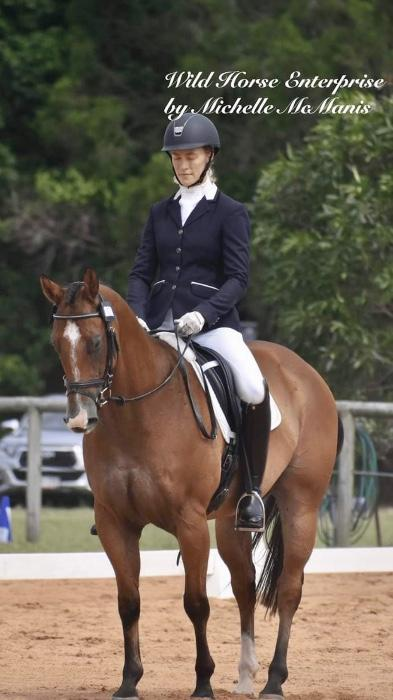 Lovely dressage and all rounder geldin.