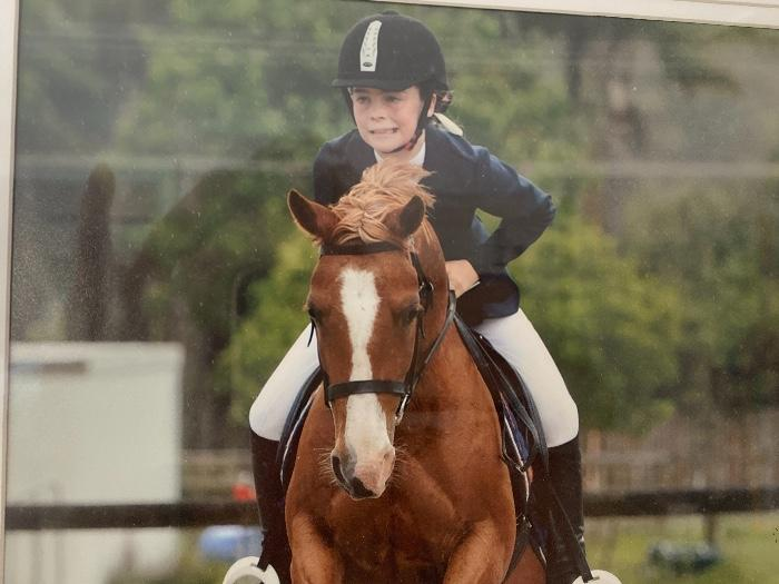 Talented All rounder  Showjumping Pony  13.2