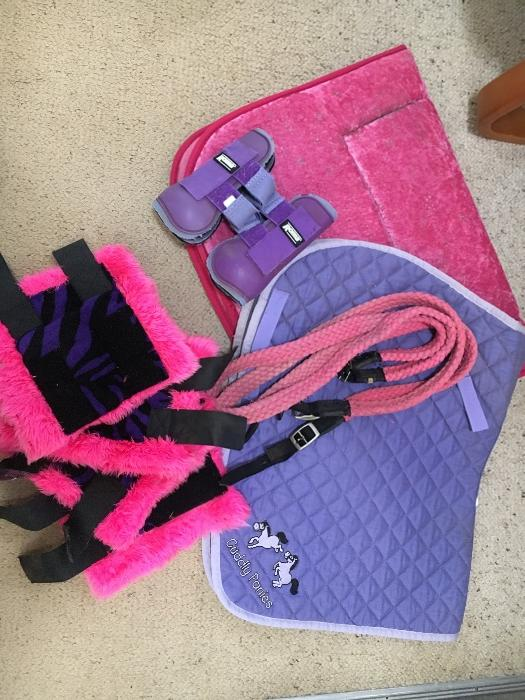 Girls Pink/Purple Gear