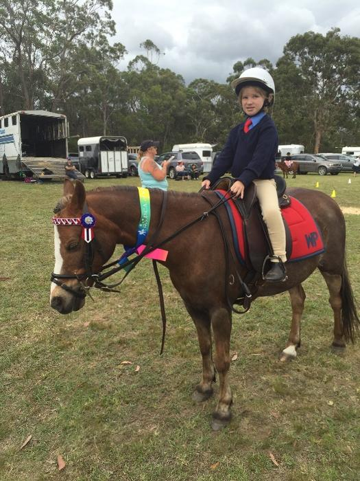 Mothers Dream  Perfect Beginners/1st Pony off lead