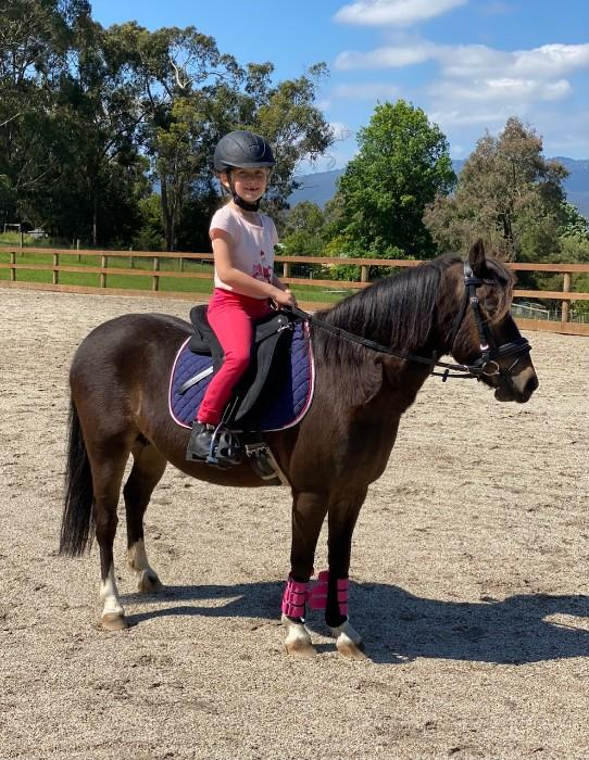 """Mabel"" is sweet, quiet and kind pony"
