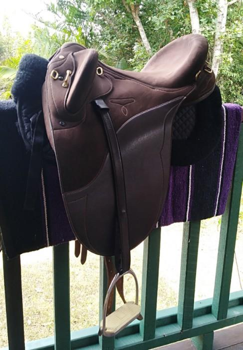 Saddle and bridle.