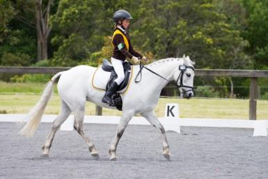 Pep Mt Evelyn CT Dressage.jpg
