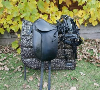 Anky pony saddle package.jpg
