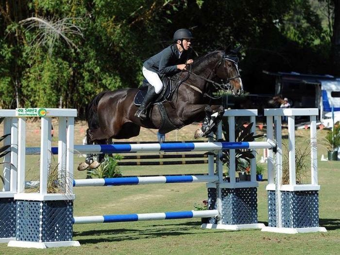 Competitive Junior Horse