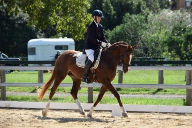Courtland's Ashling by Casanova