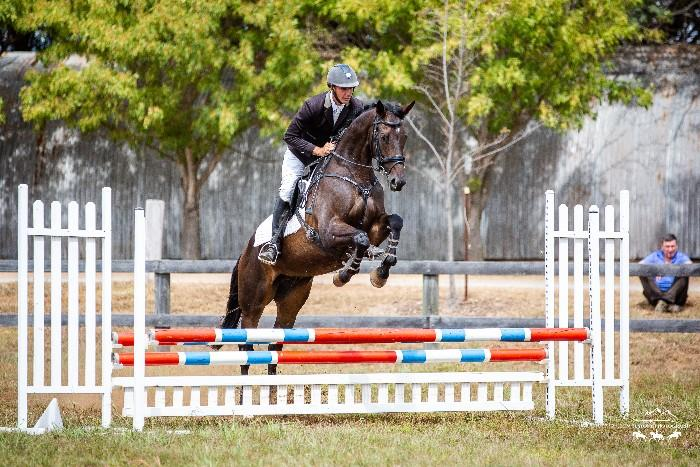 Talented 5yo Eventer