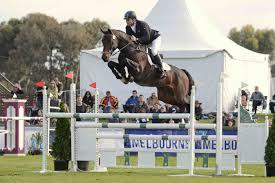 Showjumping or Eventing mare by Contenda