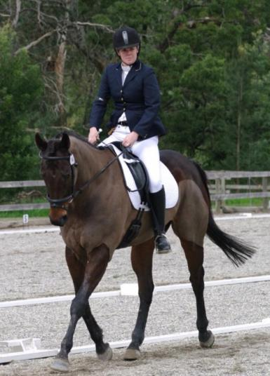 Lotto dressage1.jpg