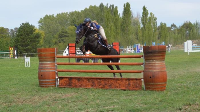 Competitive THSA Junior/Amateur Show Jumper