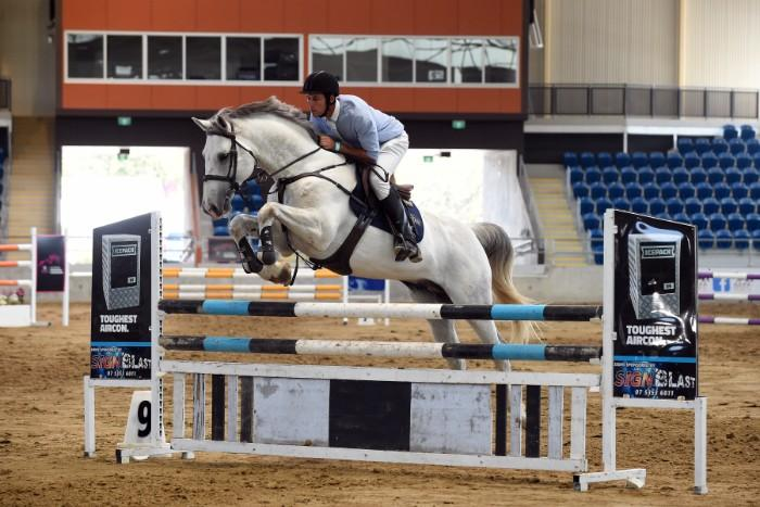 Warrego William - breed your next jumping champion