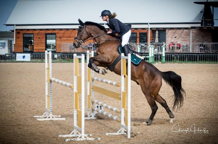 Ideal junior showjumper