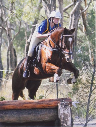 North West Equestrian Expo Coonabarabran - Eventing