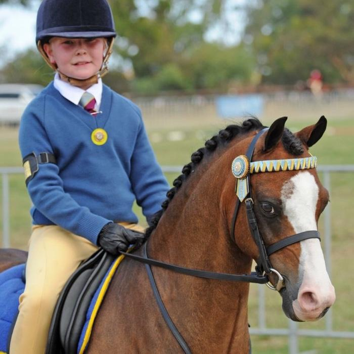 Perfect Child's Beginner Pony