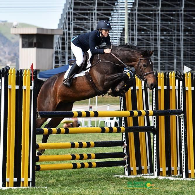 SHOWJUMPING MARE 1.20m - 1.25m