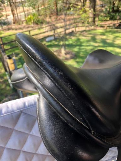 Collegiate Saddle 2.JPG