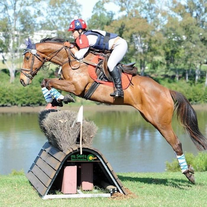 Perfect Interschool Eventer