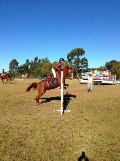 85cm at pony club