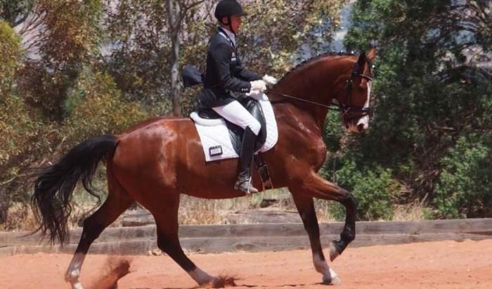 EQUITANA 2018 Auction-Cooramin Rialto Hit (DRSG)