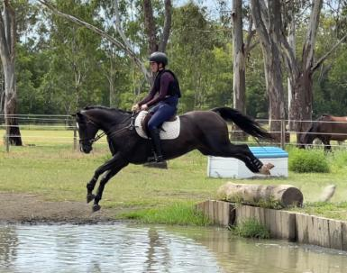 dasher water jump teg (2).png