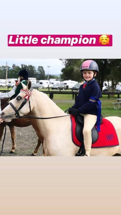 Wyatt Park Golden Quince - Ultimate Barbie Pony