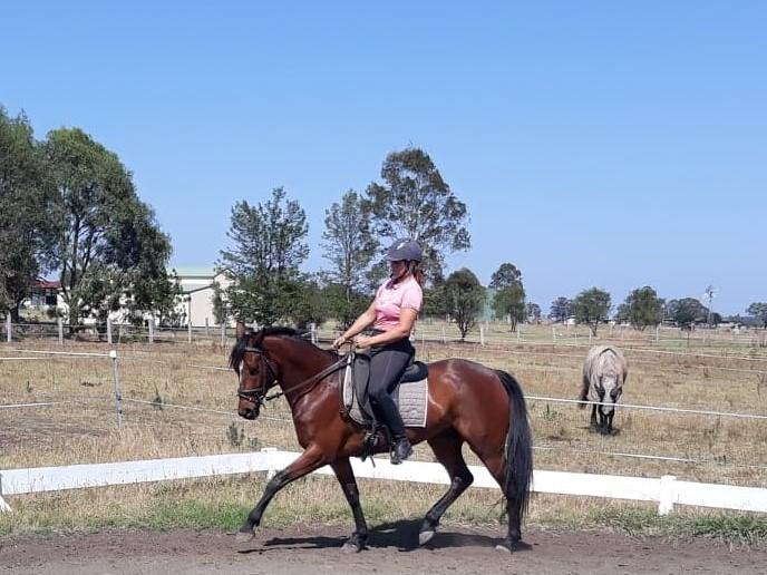 Bijou De Paris  5 year old Registered Paint Mare