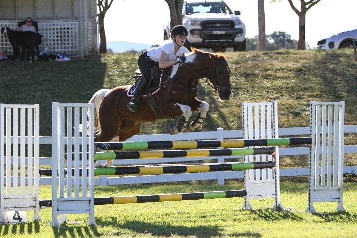 XCELLA- Top Showjump Performance Pony