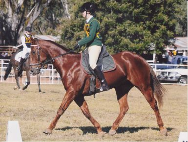 North West Equestrian Expo Coonabarabran - Dressage