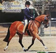 Ultimate Schoolmaster/Mother's Dream Price Reduced