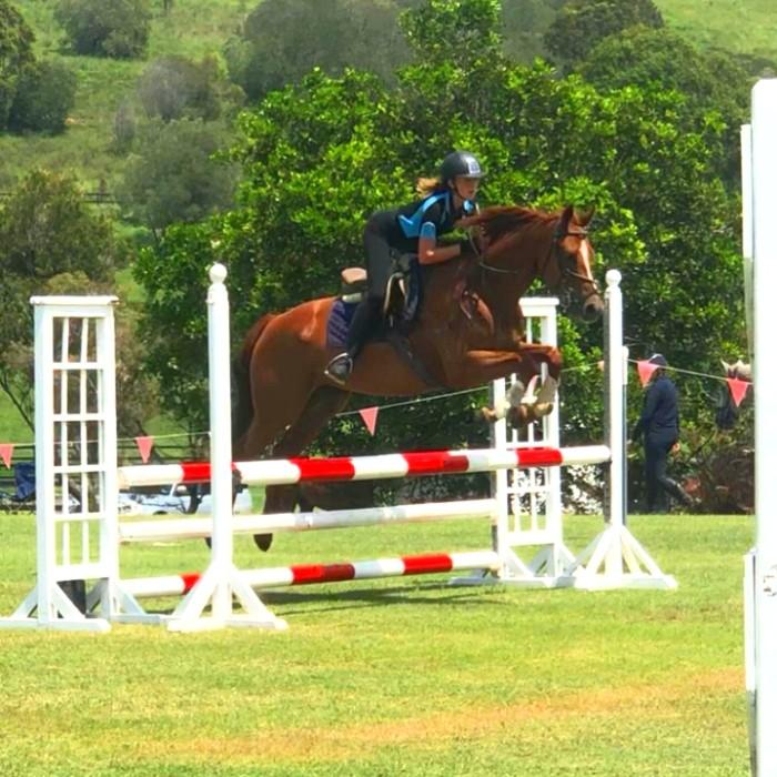 Perfect Juniors Interschool Mount