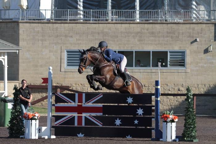SENSATIONAL  Junior/amateur show jumper