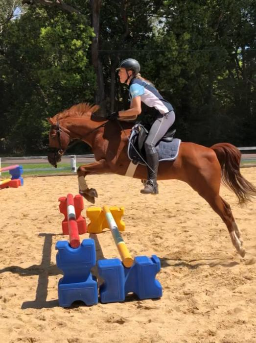 Heartbreaking sale of a super fun pony