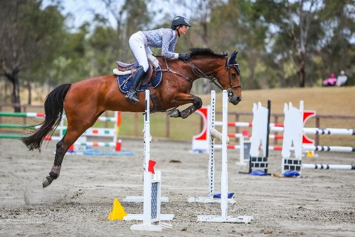 Competitive Fun Showjumping Mare