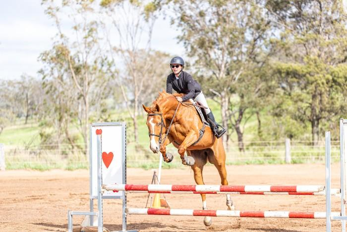 Jump, event or dressage!