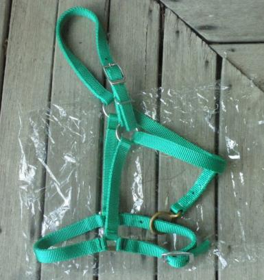 green pony halter.jpg