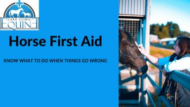 Horse First Aid.png