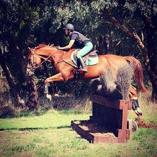 Quiet and fun eventer