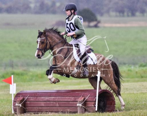 Super Pony Club Allrounder