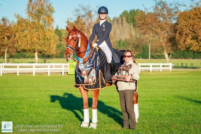 Competitive Grand Prix Dressage Horse