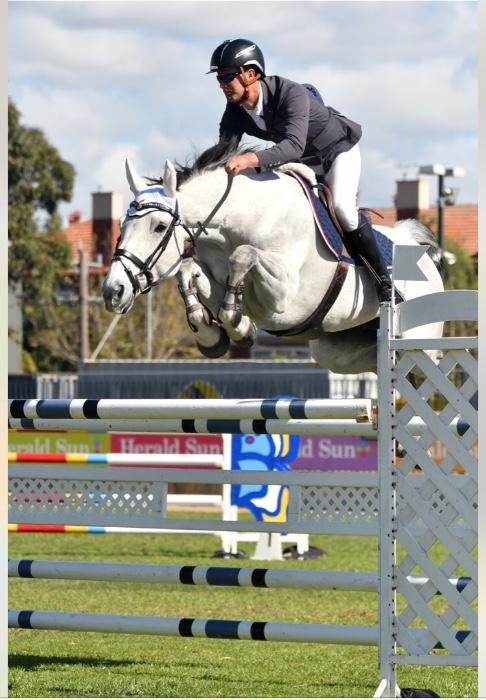 Showjumping Mare Junior Young Rider Amateur