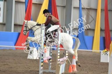 ISC showjump 2- credit to Derek O'Leary