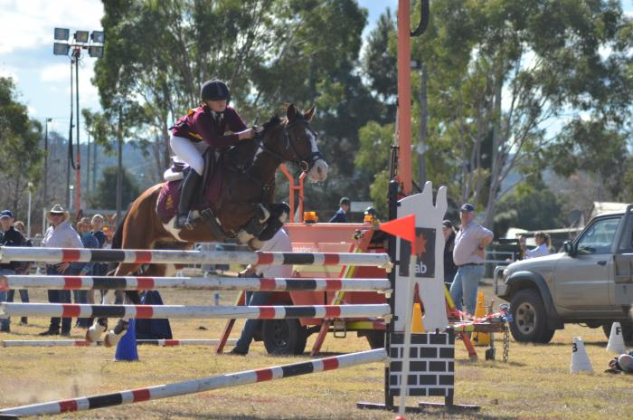 Outstanding Eventer/Showjumper