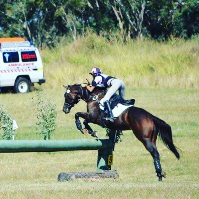 2* Eventer For Sale