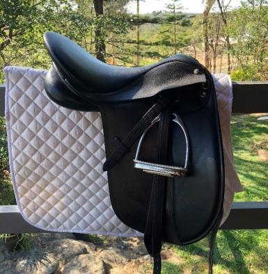Collegiate Saddle 5.JPG