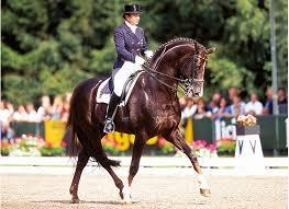 Donnerhall - legendary dressage sire