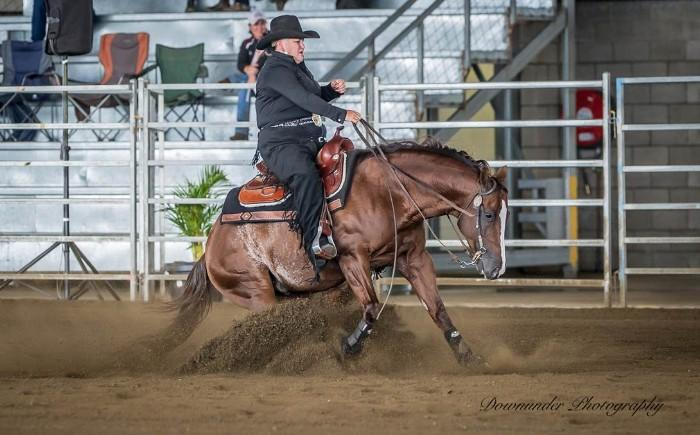 Imported Reining Superstar