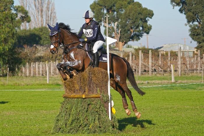 Ultimate Eventing Schoolmaster
