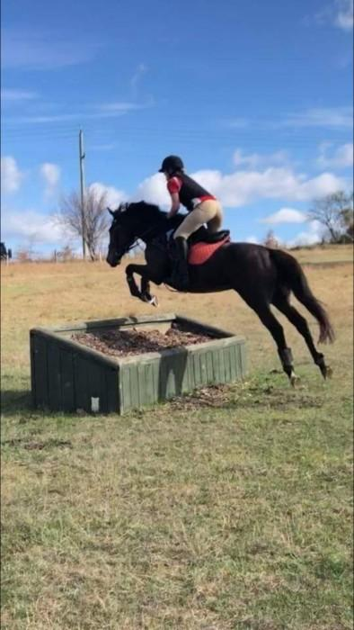Military Lass- potential for next eventer